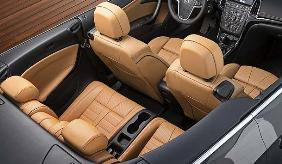Convertible Leather Upholstery